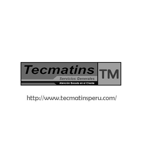 Tecmatins Servicios Generales